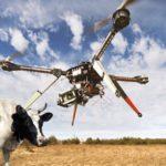 Une mamie abat un drone au fusil «parce qu'il emmerdait les vaches»