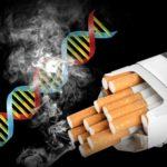 Le tabagisme se voit sur votre ADN, même 30 ans après avoir arrêté