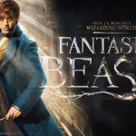 Les animaux fantastiques : JK Rowling annonce 5 nouveaux films !