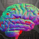 La conscience auraitété localisée précisément dans le cerveau