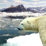 Réchauffement climatique : les émissions de CO2 stagnent enfin depuis 3 ans