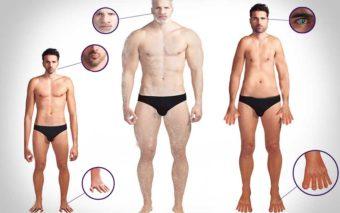 Evolution : découvrez le corps de l'homme du futur, selon trois scénarios