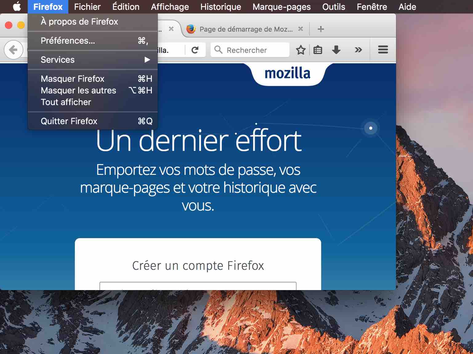 firefox comment supprimer cookies