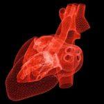 IA maladies cardiaques