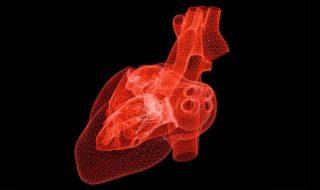 L'intelligence artificielle peut maintenant prédire les crises cardiaques mieux que les médecins