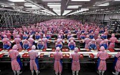 iPhone 7 : un étudiant raconte l'enfer d'une usine d'assemblage chinoise