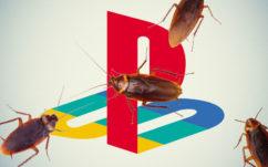 PS4 : pourquoi les cafards adorent y vivre et prospérer