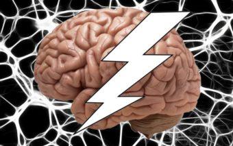 Sommeil : les neurones se cannibalisent lorsque vous n'avez pas assez dormi
