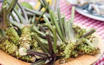 Au Japon, le Wasabi serait un remède miracle contre la calvitie !