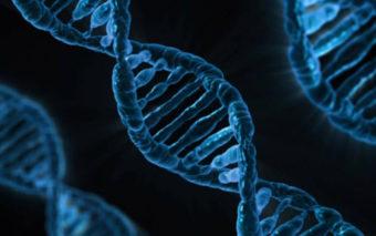 L'ADN se réplique sous vos yeux dans cette incroyable vidéo, une première mondiale !