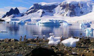 antarctique rechauffement climatique
