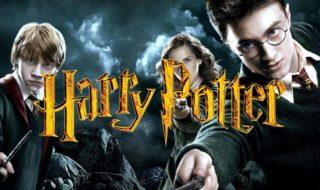 Facebook : Harry Potter fête ses 20 ans en jetant un sort au réseau social !