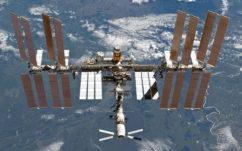 ISS : un ver se fait pousser une deuxième tête dans l'espace, en photo
