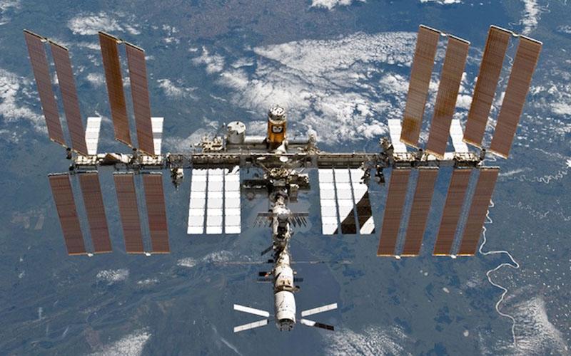 Des scientifiques affirment qu'un ver est revenu de l'ISS avec deux têtes