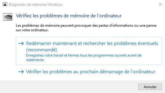 outil diagnostic memoire windows