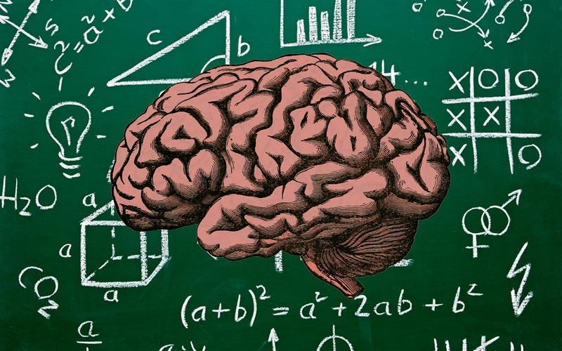 Cerveau lent