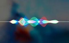 Apple : Siri, l'assistant personnel des iPhone serait de moins en moins utilisé