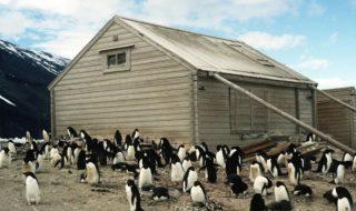 Antarctique : un gâteau vieux de 100 ans retrouvé en parfait état dans un refuge abandonné