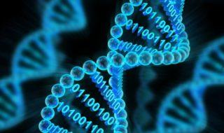 Des chercheurs injectent un malware dans de l'ADN pour pirater un ordinateur