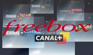Freebox Révolution avec TV by Canal : les chaînes Canal+ gratuites jusqu'au lundi 25 septembre
