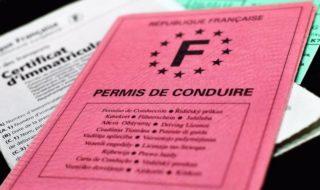 Permis de conduire et carte grise : les demandes se feront bientôt uniquement sur internet