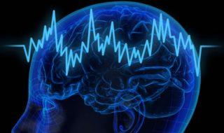 Cerveau : un implant booste la mémoire, et ça pourrait tout changer !