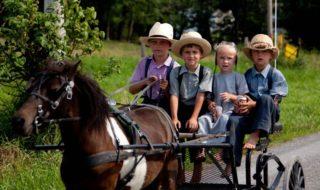 Espérance de vie : on sait pourquoi les Amish vivent 10 ans de plus que la moyenne