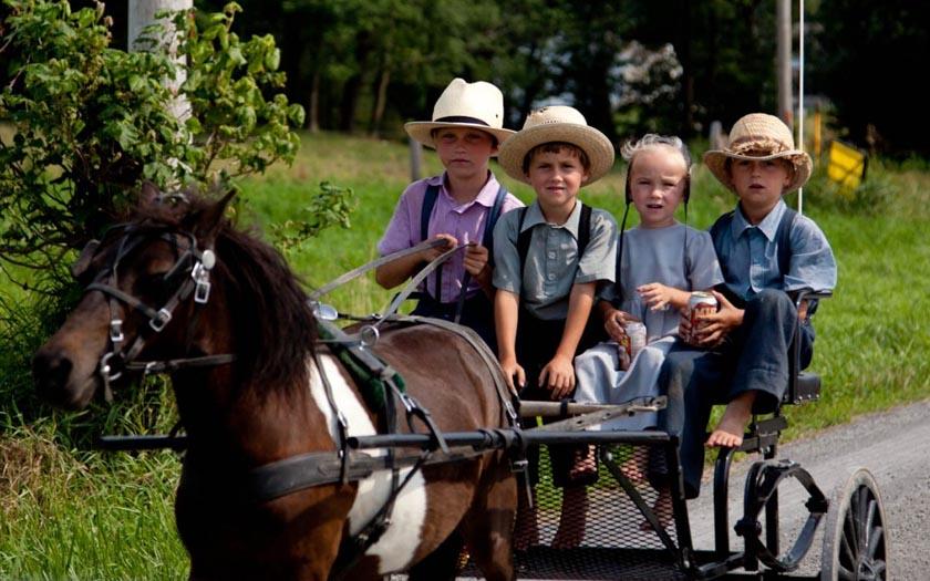 Une mutation génétique retrouvée chez les Amish explique leur longévité