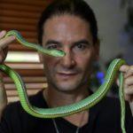 Steve Ludwin Serpent