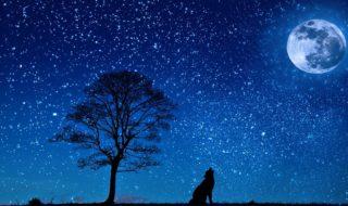 Nuit des Étoiles août 2018 : à quelles dates, heures, où et comment observer la voûte céleste ?