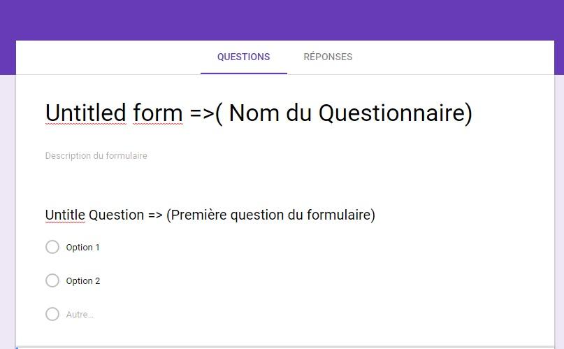 Questionnaire google 1