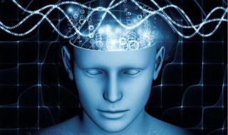 Les humains seraient capables de ressentir le champ magnétique terrestre, un sixième sens caché