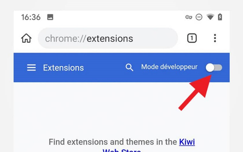 Extension Chrome Kiwi Browser