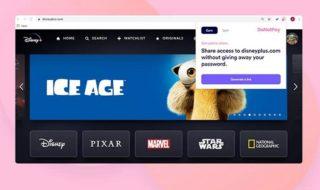 Netflix, Spotify : cette extension Chrome facilite le partage de comptes sans le mot de passe