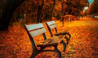 Équinoxe d'automne 2020 : pourquoi la nouvelle saison démarre ce mardi 22 septembre ?