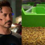 Robert Downey Junior insectes
