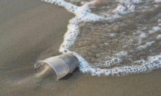 Pollution : 14 millions de tonnes de microplastiques tapisseraient les fonds marins