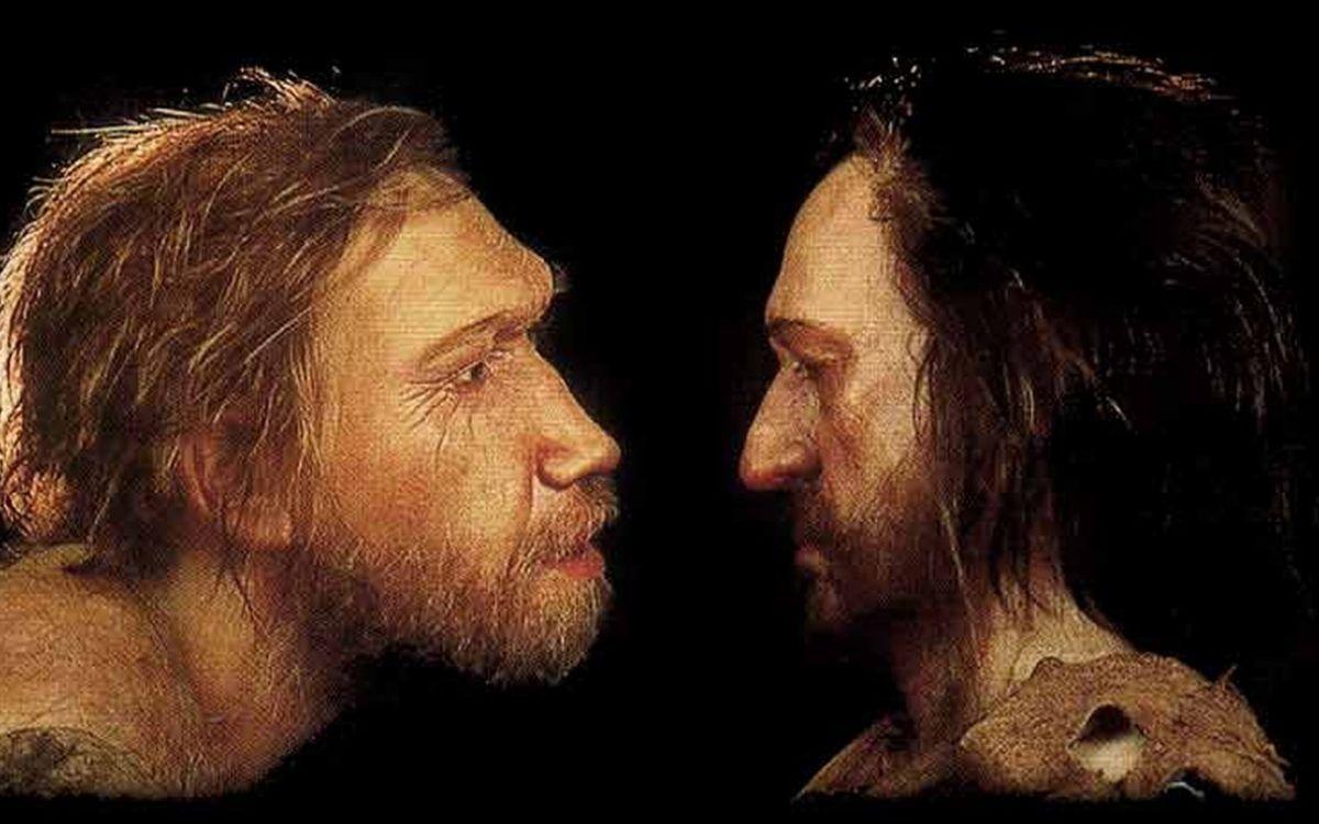 Homme de Néandertal et Homo sapiens
