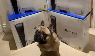 PS5 : grâce aux bots, 3 500 consoles achetées par 12 personnes au Royaume-Uni
