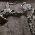 Deux victimes de l'éruption du Vésuve à Pompéi