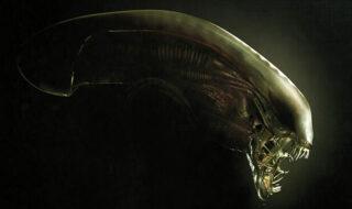 Alien et Predator : de nombreux projets sont à venir (séries, films)