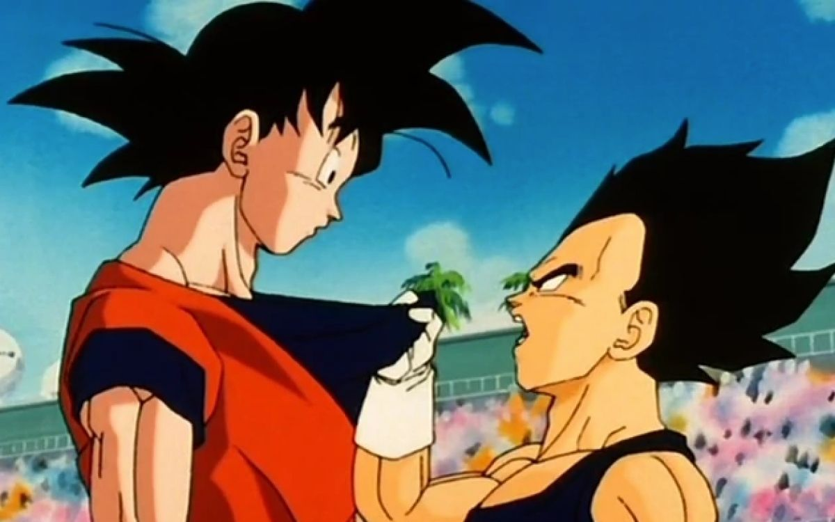 Taille Son Goku et Vegeta