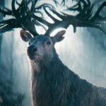 Shadow and Bone : la nouvelle série fantastique de Netflix