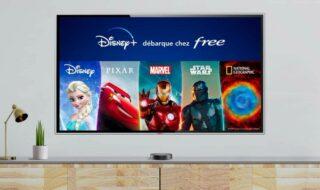 Disney+ gratuit sur Freebox Mini 4k