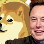 Elon Musk et le Dogecoin