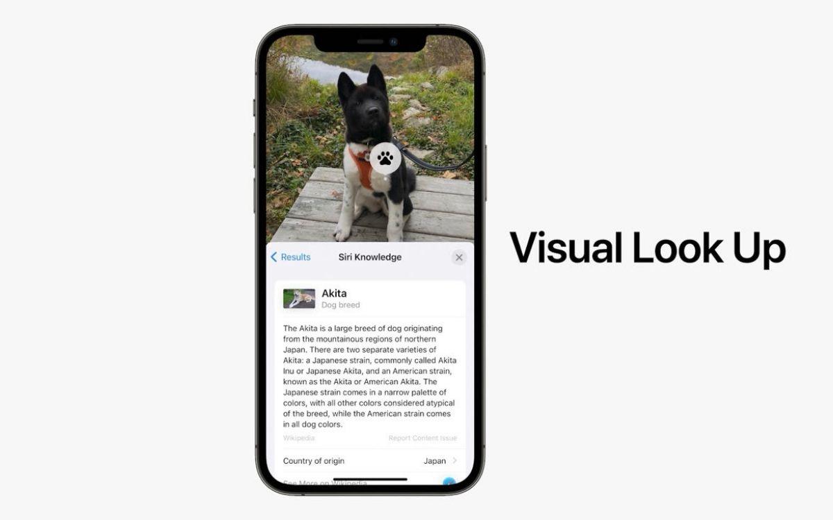 iOS 15 texte sur images