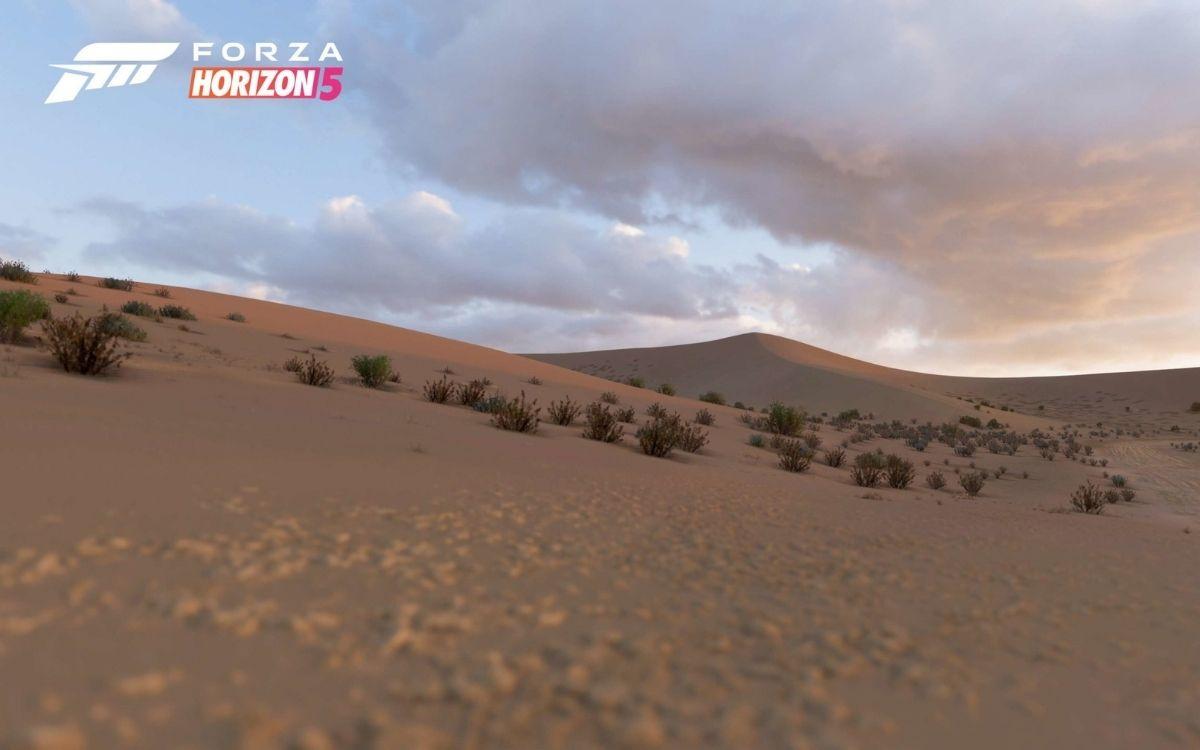 Forza Horizon 5 Désert