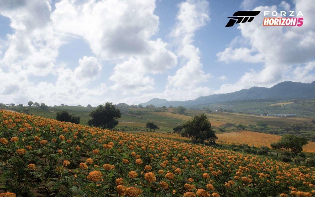 Forza Horizon 5 Terres Agricoles