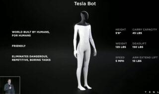 Tesla Bot : le robot humanoïde d'Elon Musk se cherche des ingénieurs
