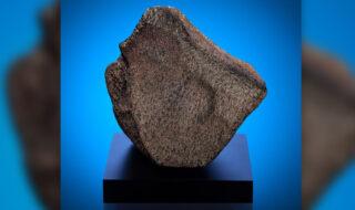 Voici la plus grande météorite martienne découverte sur Terre